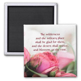 Imã 35:1 de Isaiah - o deserto exultará e florescerá