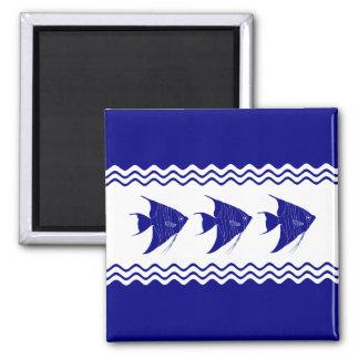 Imã 3 Angelfish litorais do azul marinho e os brancos