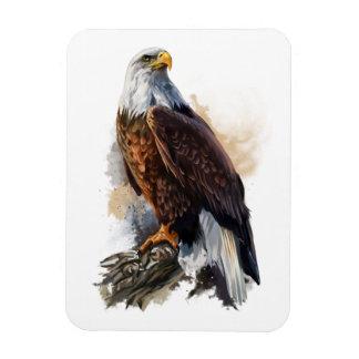 Ímã A águia americana