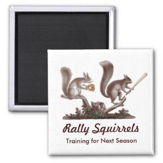Imã A reunião Squirrels o treinamento para a próxima