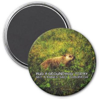 Imã Abrace um groundhog hoje. Obtenha um ímã do tiro