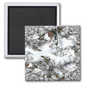 Imã Abstrato da neve