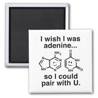 Imã Adenina