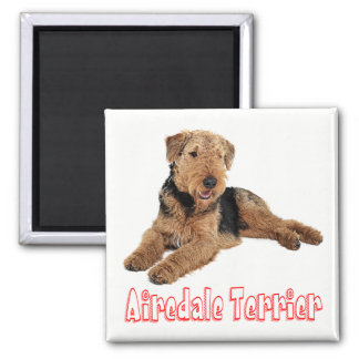 Imã Airedale Terrier Brown & amor preto do vermelho do