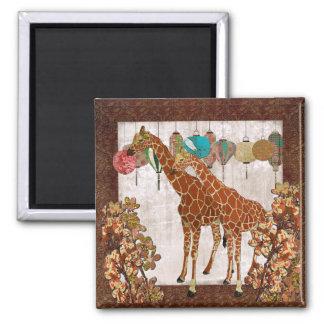 Ímã alaranjado da flor dos girafas ímã quadrado