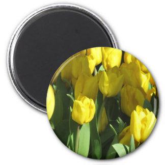 Ímã amarelo das tulipas ímã redondo 5.08cm