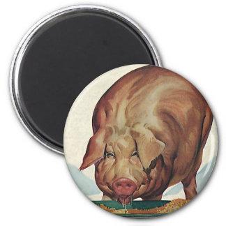 Imã Animais de fazenda do vintage, Slop comer do porco