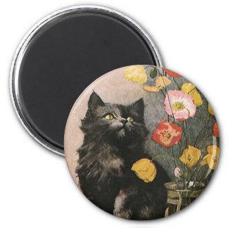 Imã Animais do vintage, gatinho bonito do Victorian e