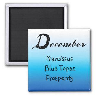 Imã Aniversário de dezembro