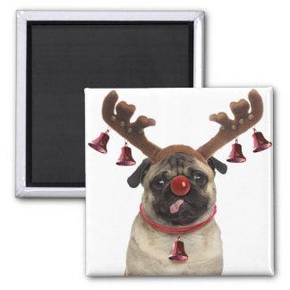 Imã Antlers do Pug - pug do Natal - Feliz Natal