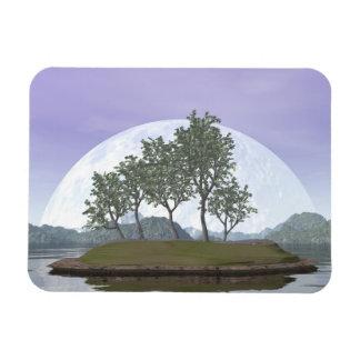 Ímã Árvore com folhas lisa dos bonsais do olmo - 3D