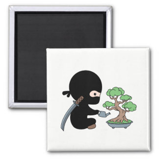 Imã Árvore molhando minúscula dos bonsais de Ninja