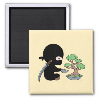 Imã Árvore molhando minúscula dos bonsais de Ninja no