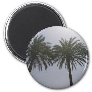 Imã Árvores Egipto de Sun