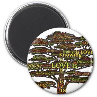 Imã atributos do amor