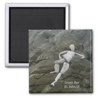 Imã Baía bêbeda na lagoa de sal, St John, Virgin