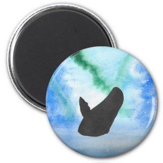 Imã Baleia com aurora boreal