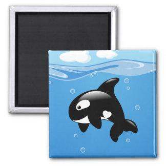 Imã Baleia pequena bonito da orca no oceano