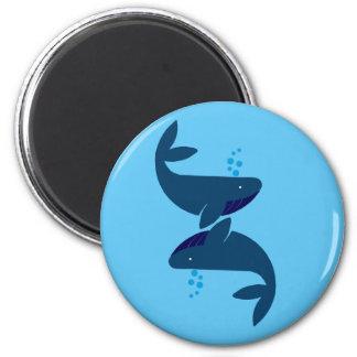 Imã baleias azuis
