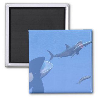 Imã Baleias e megalodon subaquáticos - 3D rendem