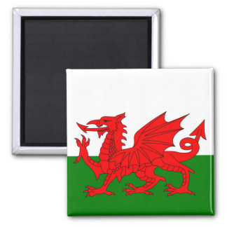 Imã Bandeira de Wales
