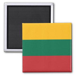 Imã Bandeira do ímã de Lithuania