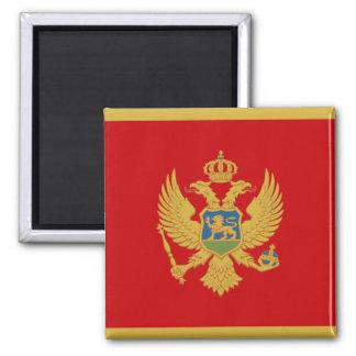 Imã Bandeira do ímã de Montenegro