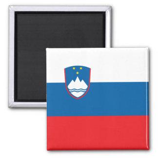 Imã Bandeira do ímã de Slovenia
