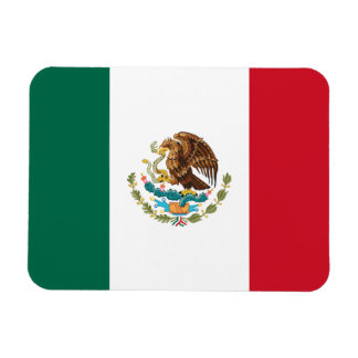 Ímã Bandeira mexicana patriótica