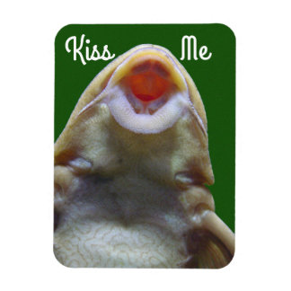 Ímã Beije-me peixes