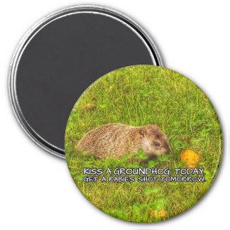 Imã Beije um groundhog hoje. Obtenha um ímã do tiro da