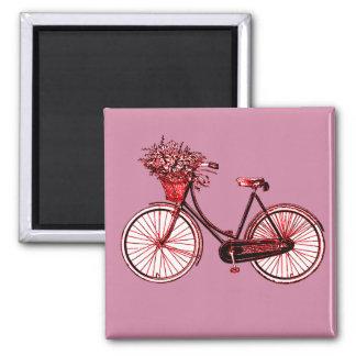 Imã Bicicleta 2