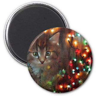 Imã Boas festas do gatinho