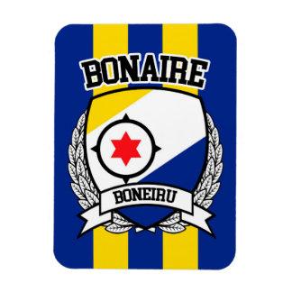 Ímã Bonaire