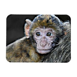Ímã bonito da cara do macaco do bebê