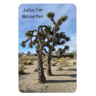Ímã bonito do prêmio da árvore de Joshua!