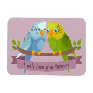 Ímã bonito dos pássaros do amor
