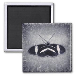 Imã Borboleta preto e branco do esboço