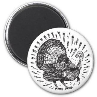 Imã Botão redondo de Turquia