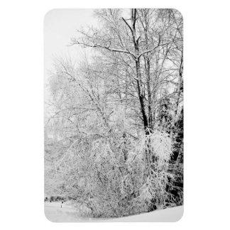 Ímã Brancos do inverno