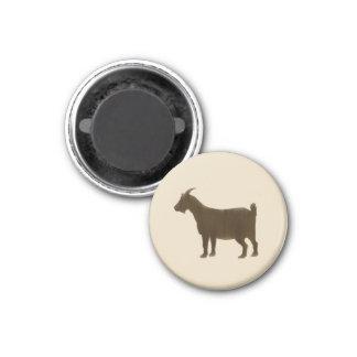 Imã Brown pintou a cabra da fazenda