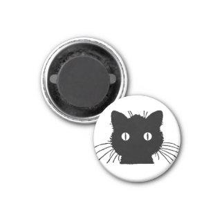 Imã Cabeça bonito do gato do gatinho