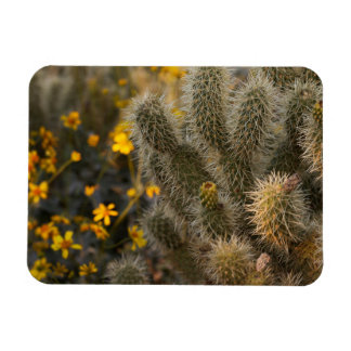 Ímã cacto e wildflowers