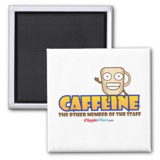 Imã Cafeína, o outro membro dos funcionarios