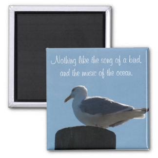 Imã Canção de um pássaro, música do ímã da gaivota do