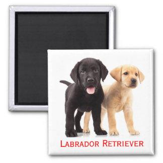 Imã Cão de filhote de cachorro amarelo preto de