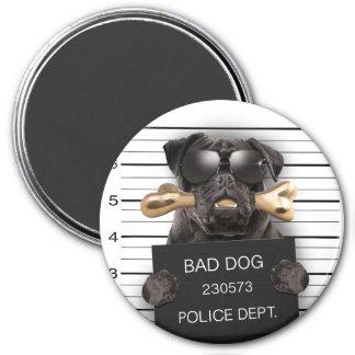Imã Cão do Mugshot, pug engraçado, pug