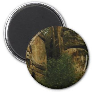 Imã cara amarela da rocha com árvores