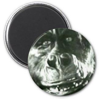 Imã Cara grande do macaco