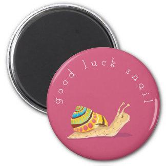 Imã Caracol da boa sorte
